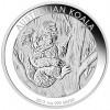 1695_Australian 2013 Silver Koala 1 oz_1