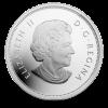 加拿大 2014 楓葉精鑄銀幣5盎司_24369