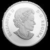 加拿大2014 Nanaboozhoo和雷鳥的巢精鑄銀幣1盎司_25373