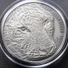 托克勞 2013 亞洲虎高浮雕銀幣5oz_26839