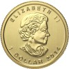 Canada 2014 Gold Maple 1/20 oz_28222