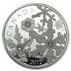 1873_canada_2012_snowstorm_silver_1_oz_1