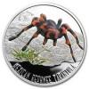 3136_niue_2012_tarantula_silver_2