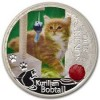 3431_niue_2012_kurilian_bobtail_cat_proof_silver_1_oz_1