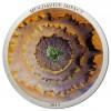 5168_cook_islands_2014_moldavite_impact_silver_coin_1_oz_1