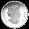 加拿大2015加拿大森林 - 沿海松樹精鑄銀幣1盎司_34331