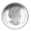 加拿大2015加拿大森林-北方香脂白楊樹精鑄銀幣1盎司_39549