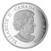 加拿大2015 雪鴞 精鑄銀幣1盎司_39489