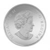 加拿大2015 崎嶇蜿蜒的山脈 精鑄銀幣2盎司_39472