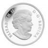 加拿大2015 動物寶寶 - 豪豬  精鑄銀幣1盎司_39459