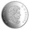 加拿大2016 幾何藝術-潛鳥  精鑄銀幣1盎司_39454