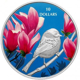 Canada 2017 Birds Among Nature's Colors - Chickadee Colored Proof Silver Coin 1/2 oz