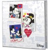 Niue 2019 Disney Love Coloured Heart-Shaped Proof Silver Coin 1 oz_44914
